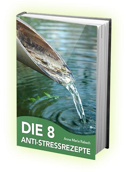 Die 8 Anti-Stress Rezepte